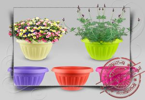 گلدان پلاستیکی ارزان