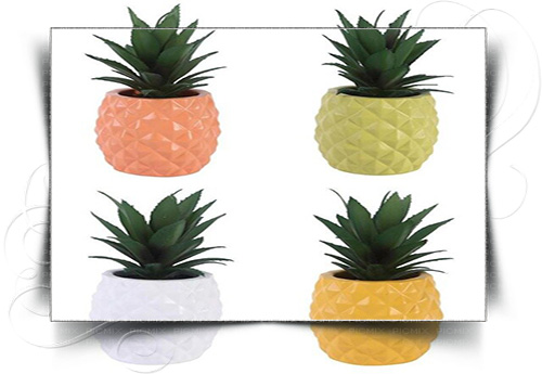 گلدان پلاستیکی آناناسی